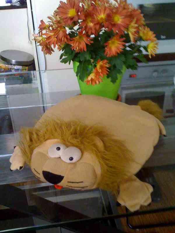 Cojin leon
