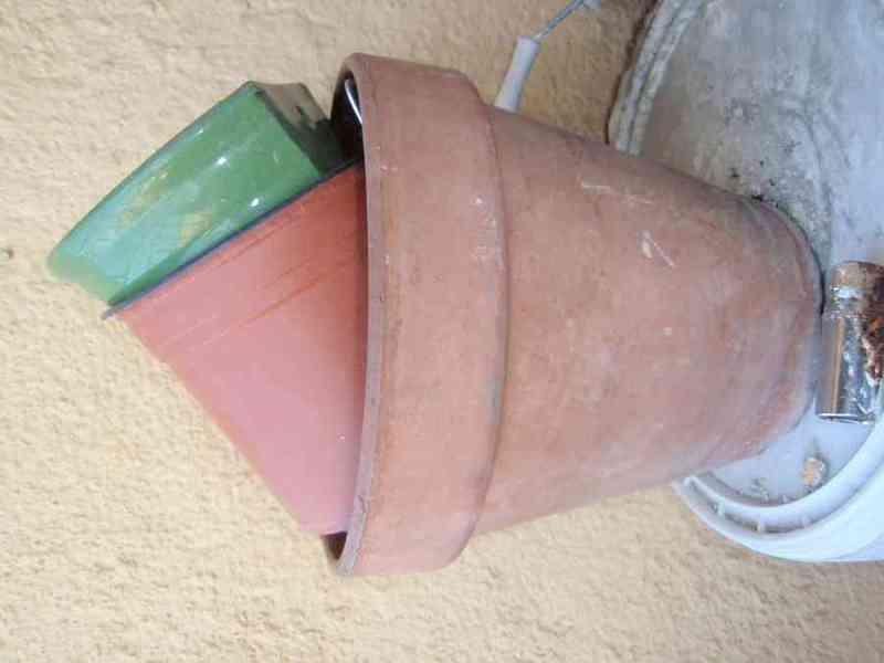 Macetas de plástico y alguna de barro y libro cuidado plantas