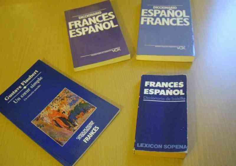 Diccionarios y novela de francés