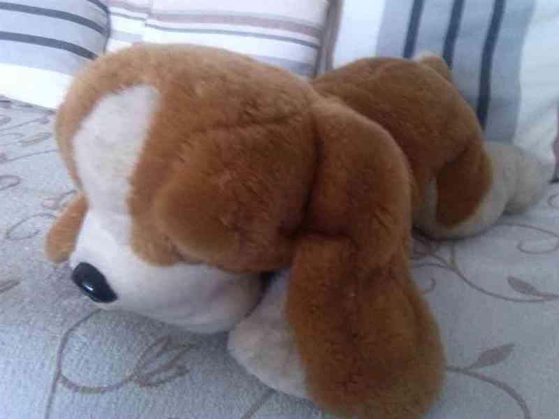 Peluche perrito -mysterious-