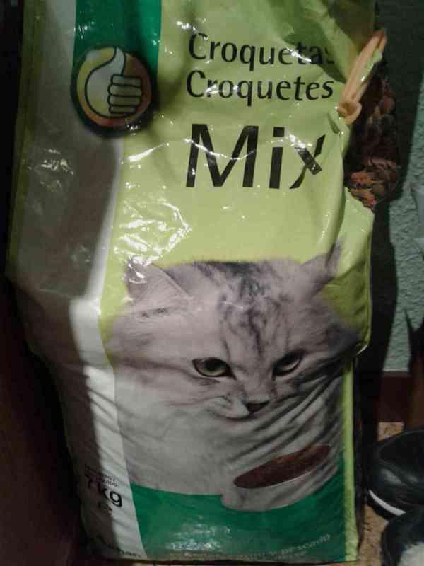 Comida para gato pequeño