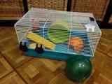 Regalo jaula con accesorios y bola para hamster