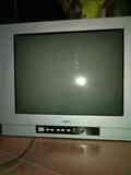 Regalo tv (con culo)  tamaño de pantalla 310x410