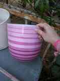 Macetero rosa