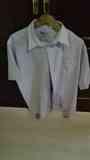 Camisa de hombre manga corta, lila clarito Talla XXL