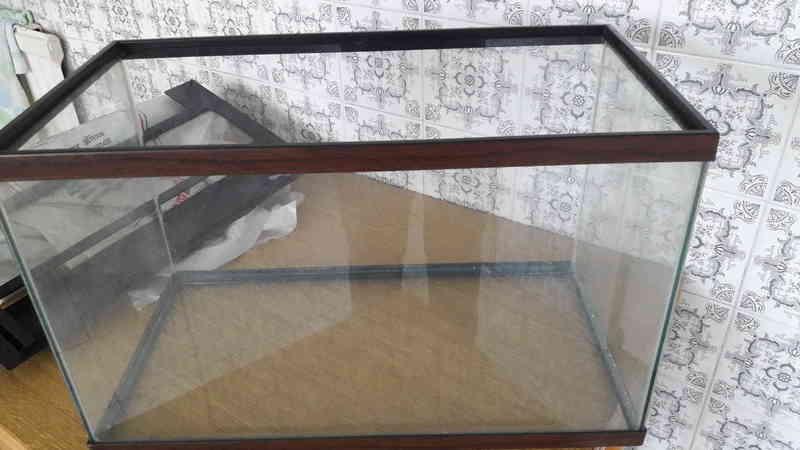 Regalo regalo acuario y accesorios madrid madrid for Acuarios zona norte