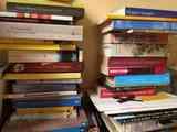 Libros en holandés
