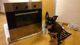 Horno Ikea no funciona resistencia de abajo (perro no incluido).