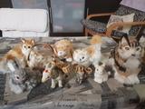Animales decoración