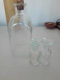 Botella cristal + botecitos