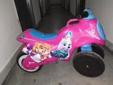 Moto Rosa patrulla canina